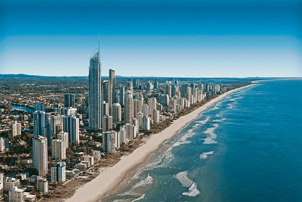 gold coast australia dingoos