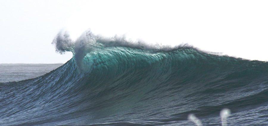 reglas del surf en australia
