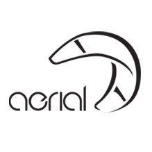 Aerial Kiteboarding Logo